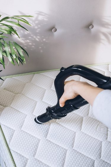 Hand with black vacuum nozzle vacuuming white mattress with white headboard next to plant