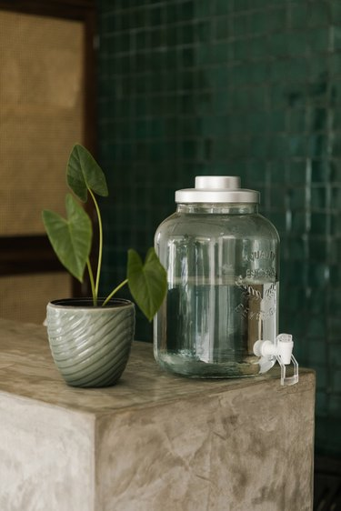 concrete countertop with water dispensier and plant
