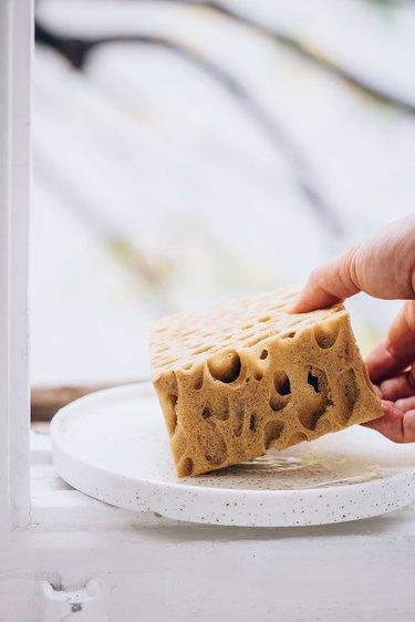 Hand holding natural sponge