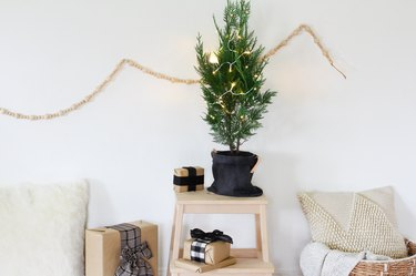 a small potted christmas tree decorated with a few lights sits on a stool