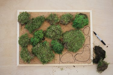 laying out clumps of moss on a cork bulletin board and tracing around them to show where to cut the cork