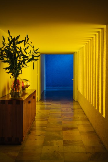 Yellow Modern Hallway leading to a blue room and wood sideboard with plant