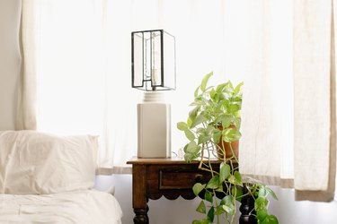 A bed with white bedding next to a wood night table with a Pothos plant and cube lantern table lamp. A white curtained window is behind.