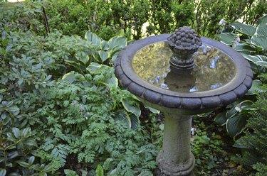 Reflective garden birdbath