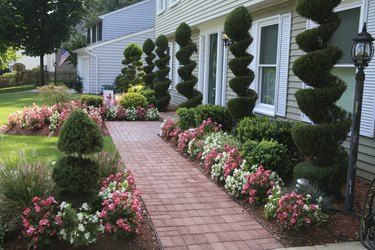 House Landscaping Project