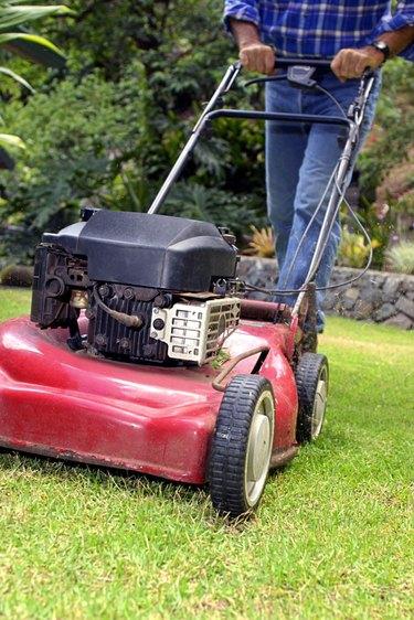 Man using lawn mower