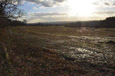 Winter on an English farm.