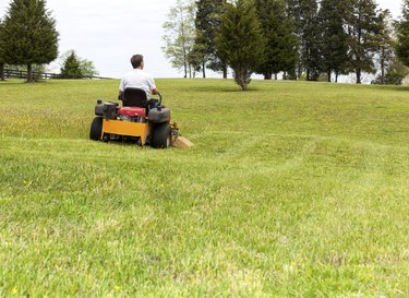 Senior man rides zero turn lawn mower on turf
