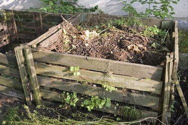 bio-compost - management by microbes and recycling