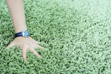 Shaggy carpet and watch