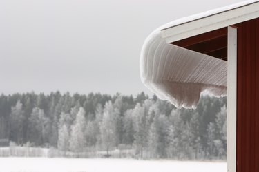 Snow covered eaves and forest