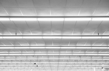 Fluorescent lights on ceiling, low angle view