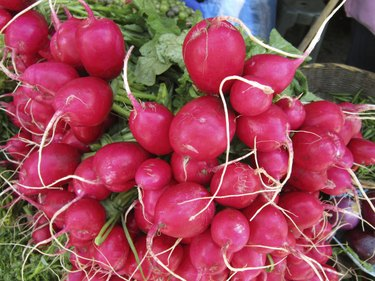 Mexican Food Market Radishes