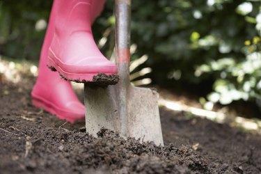 Woman digging in garden