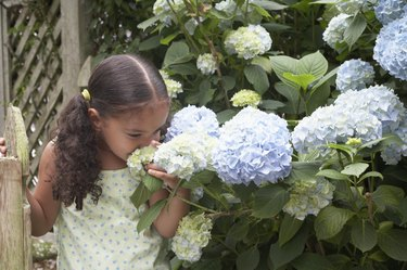 Close-up of a girl smelling flowers in a garden