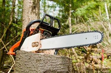 Chainsaw on tree stump