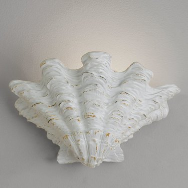 Scallop shell wall sconce