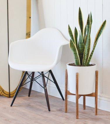 Midcentury plant stand next to white modern chair