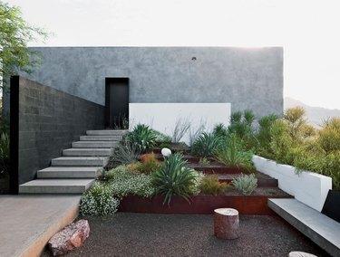 desert plants to use when landscaping wendell burnett architects private burnett house