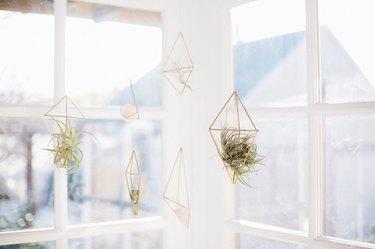 diy hanging air planters