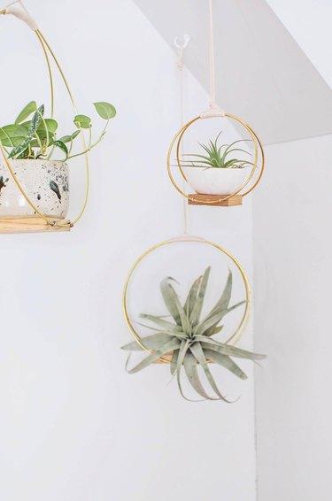 Brass ring hanging planter DIY