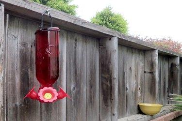 Hummingbird feeder and yellow decoy bowl