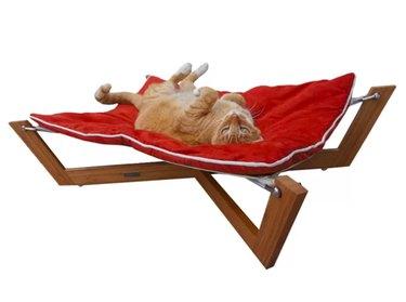 pet hammock