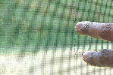 Window screen with damage.