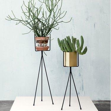 Tripod Plant Stand