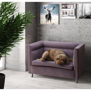 pet bed sofa