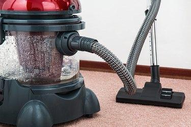 Vacuum and clean carpet.