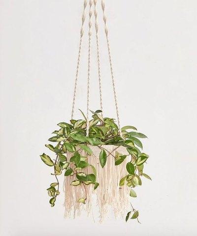 "Natalie Macramé 8"" Hanging Planter"