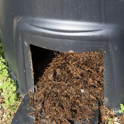 What Is Gorilla Hair Mulch?