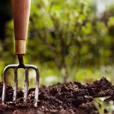 Garden Soil Amendments: Materials and Techniques