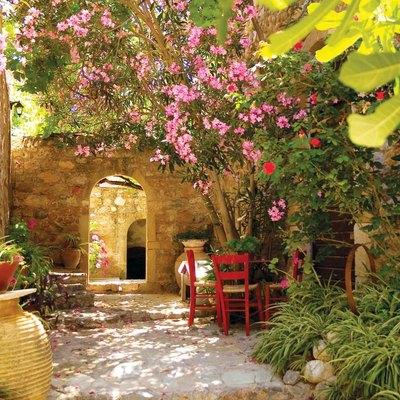 Tips for Designing a Mediterranean Garden
