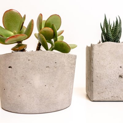 Easy DIY: Modern Succulent Planter Using Concrete