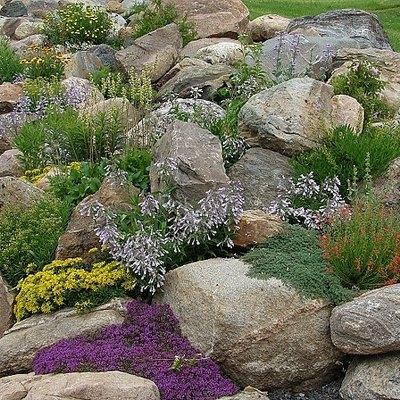 Tips for Designing a Rock Garden