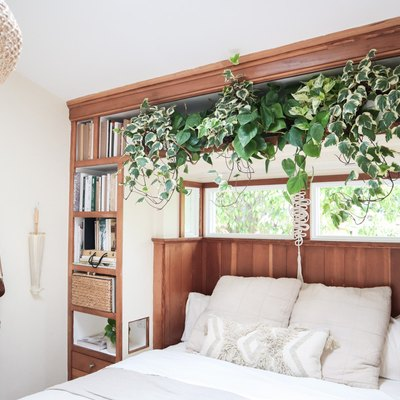 Bohemian bedroom with plants and built-in bookcase