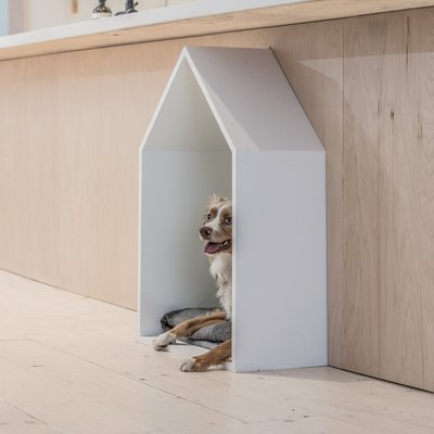 A Modern Dog House Was the Inspiration Behind This Minimalist Abode