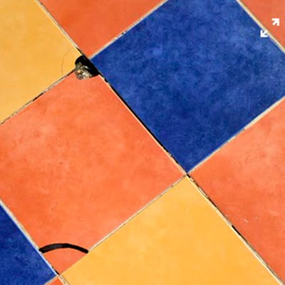 Ceramic Tile Repair: How to Replace a Broken Ceramic Tile