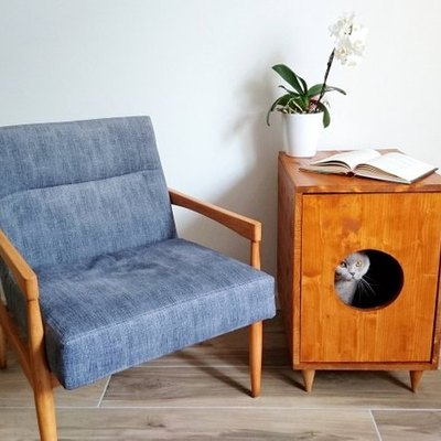 9 Stylish Ways to Hide Your Cat's Litter Box