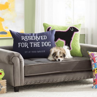 Wayfair Has a New Furniture and Accessories Line Just for Pets