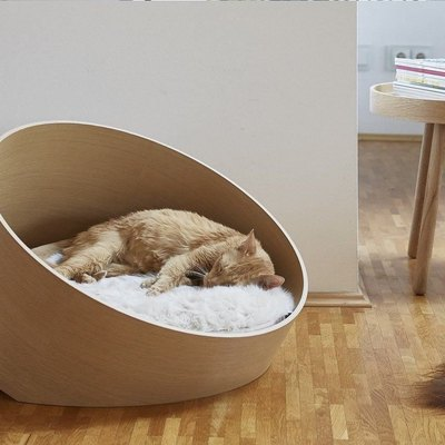 High-End Cat Furniture Is Having a Moment