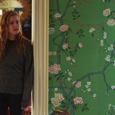 We're 99 Percent Sure This Is the Wallpaper From 'Sharp Objects'
