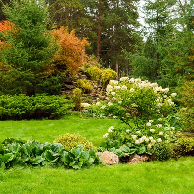 landscaped lawn of plants and artificial rocks