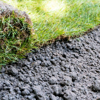 How To Lay And Maintain Sod