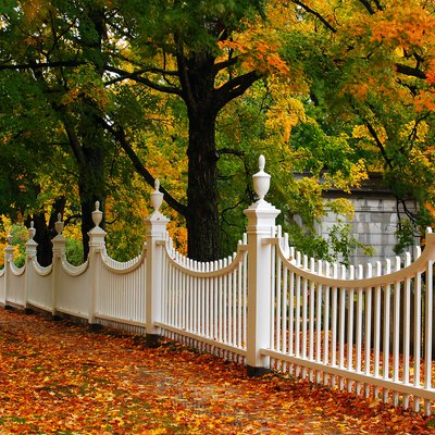 What Is the Standard Size of a Gate in a Fence?