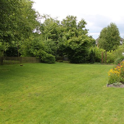 What Happens If I Spread Urea on My Lawn?