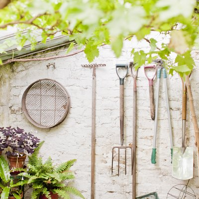 Essential Garden Tools for Beginners