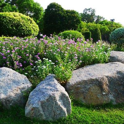 Suan Luang Rama IX Public Park